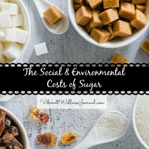 The-Social-Ethical-cost-of-Sugar