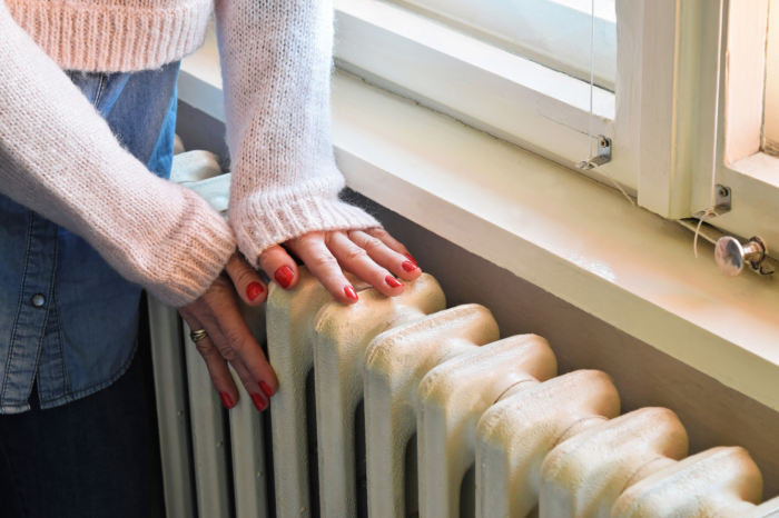 Renewable Heat Incentive (RHI) Guide